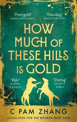 How Much of These Hills is Gold by C Pam Zhang | 9780349011455