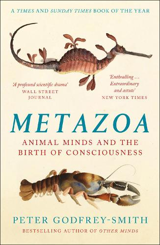 Metazoa by Peter Godfrey-Smith | 9780008321239